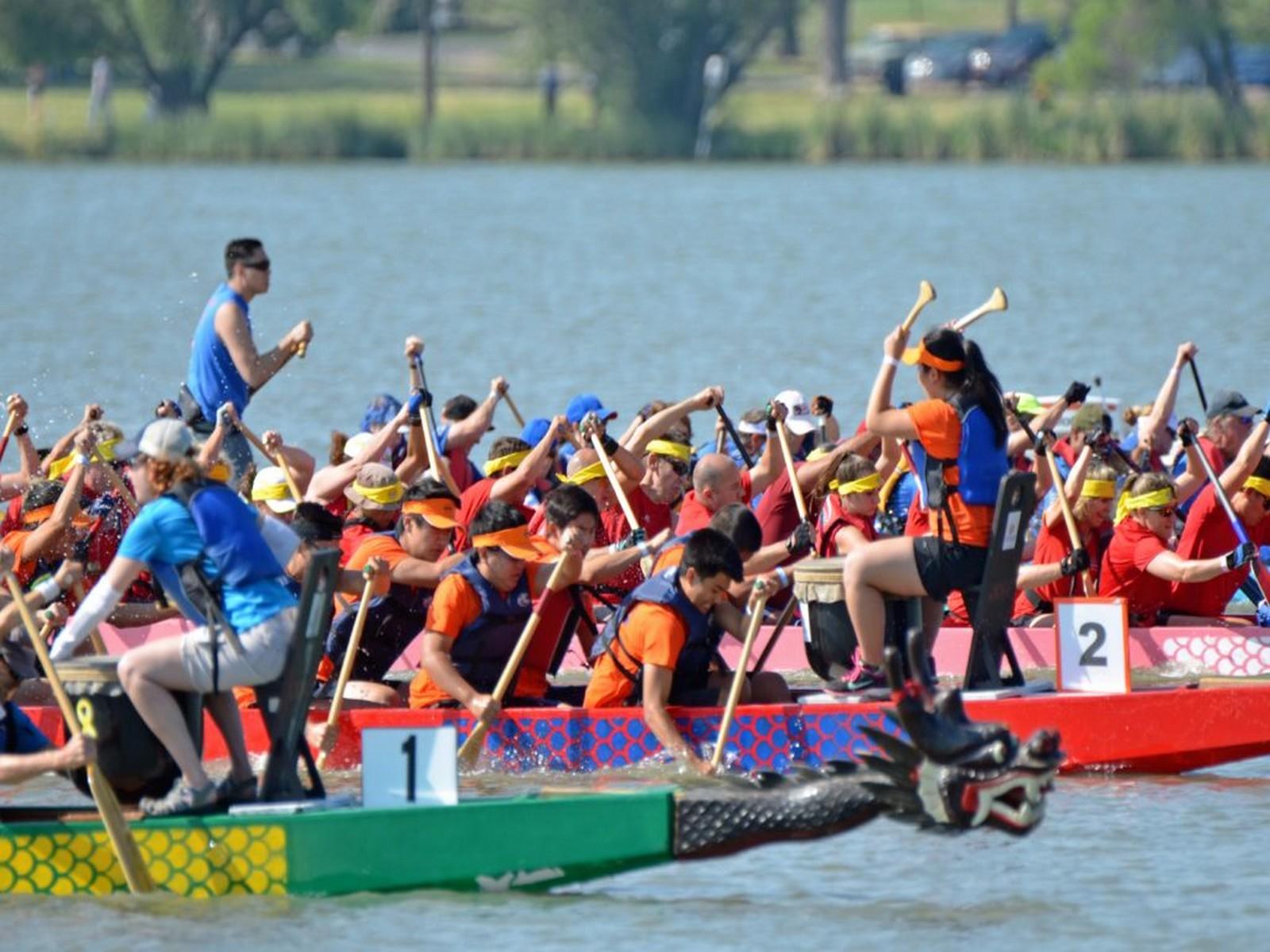 Activités dragonboat pour séminaire à Thonon lac léman