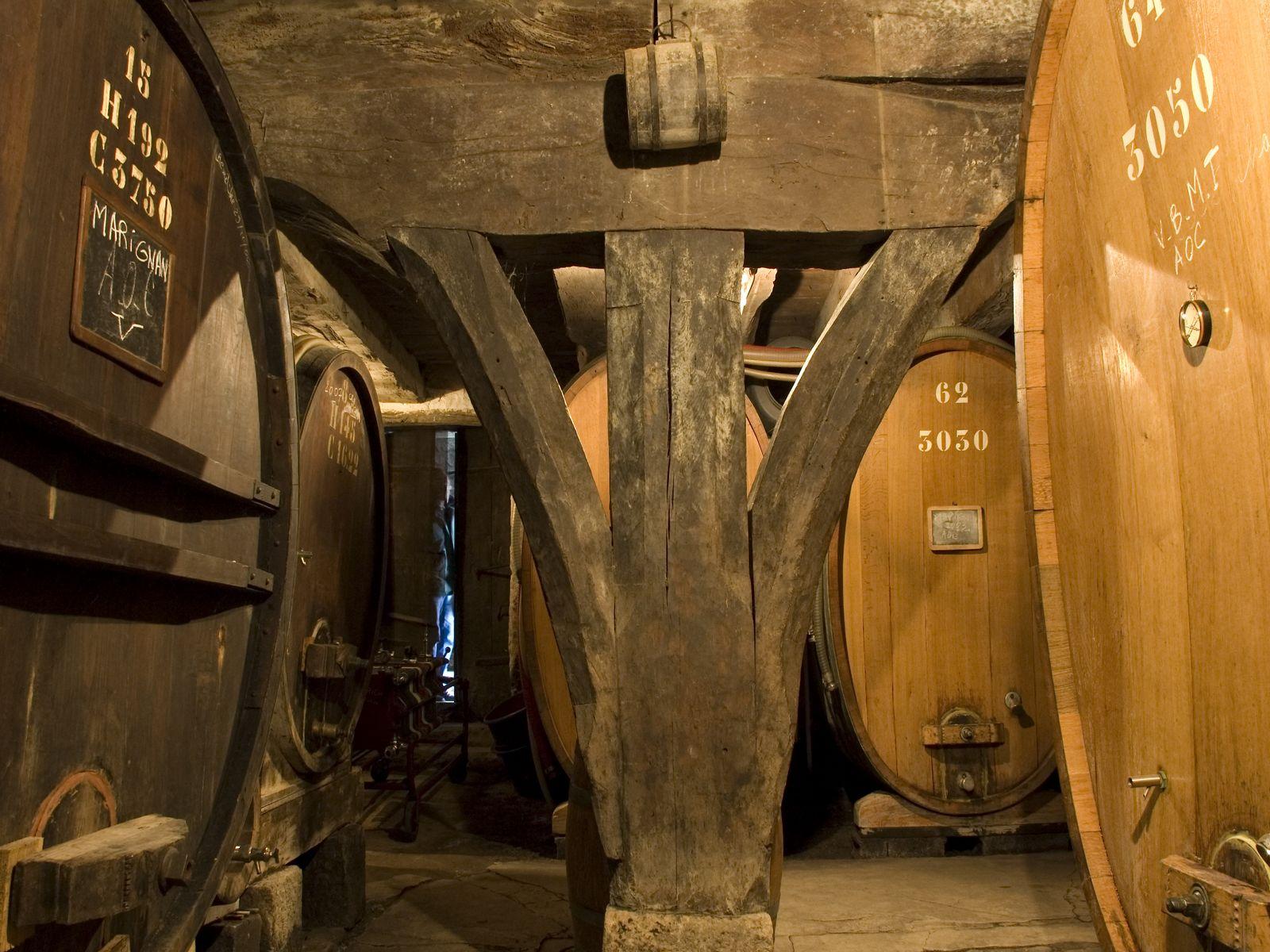 cave et olympiades chez le vigneron séminaire à challes les eaux