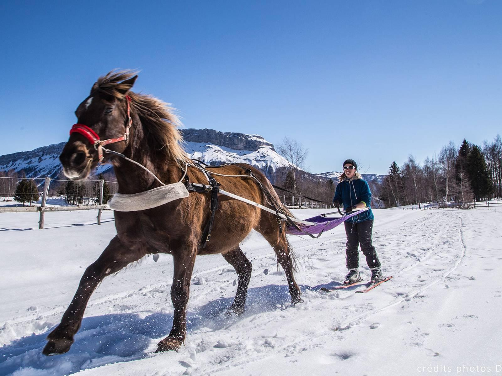 ski joering activité incentive originale hiver séminaire à chambéry